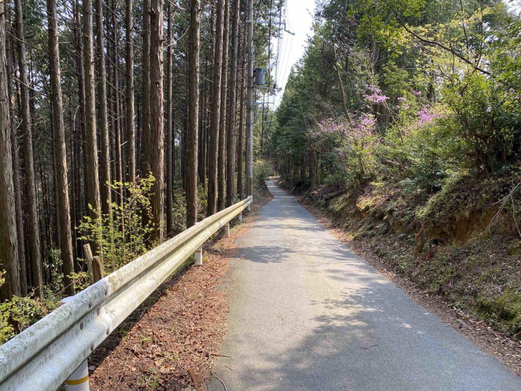京都一周トレイル 西賀茂