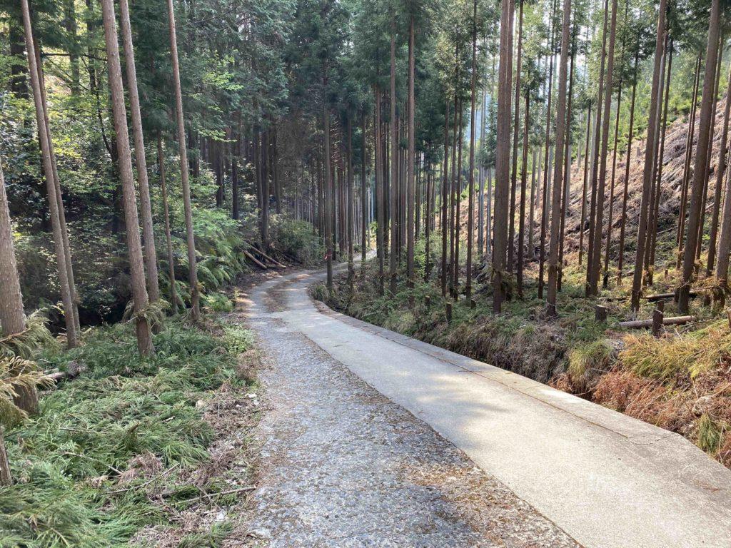 京都一周トレイル 高雄