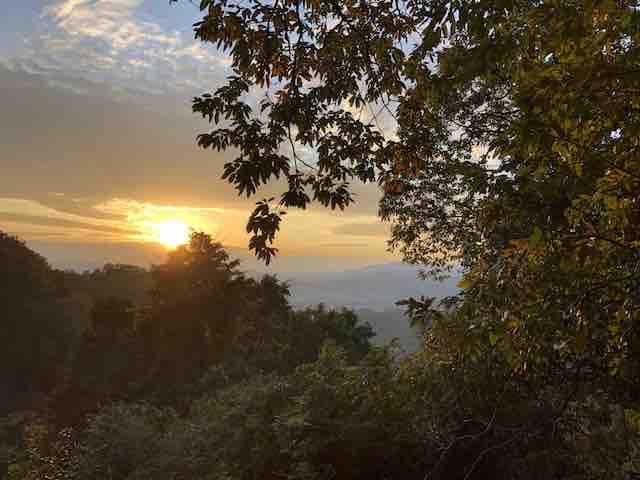 登山道の夕日
