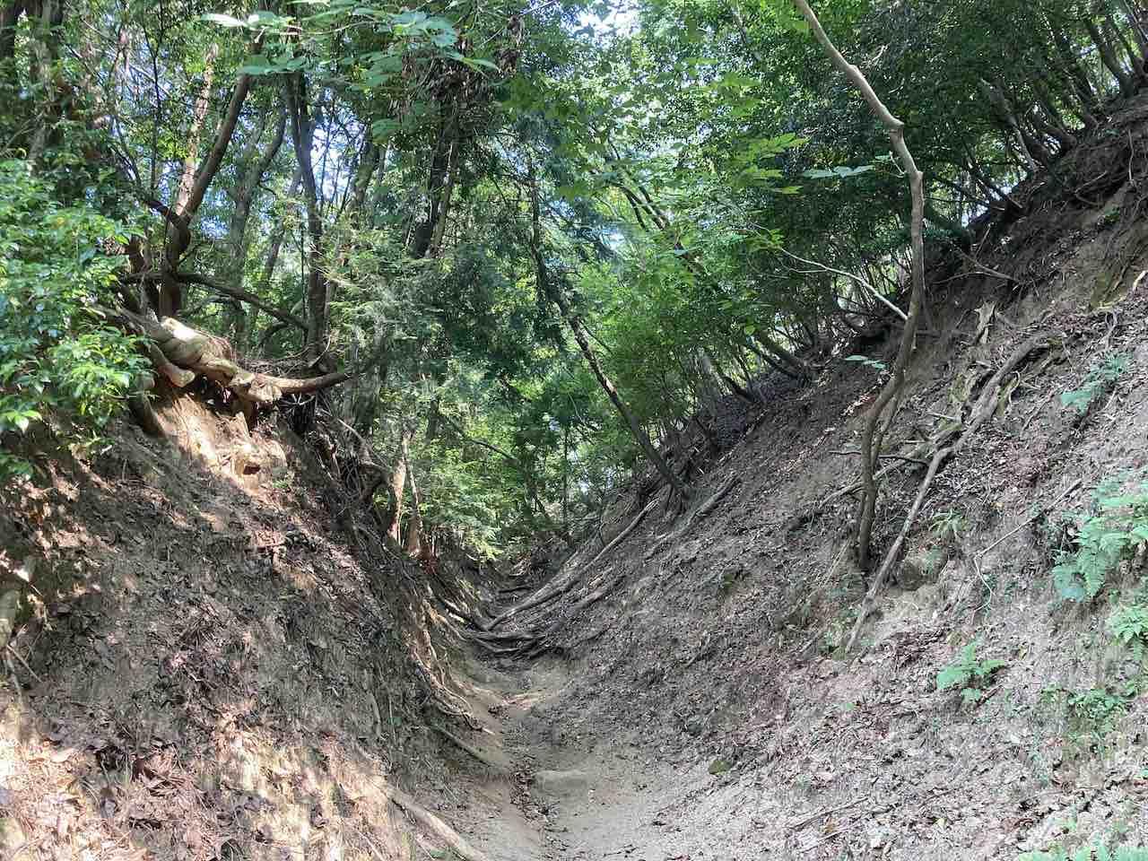 比叡山の山道