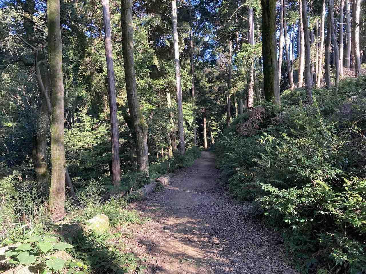 京都一周トレイル 五条(清水寺)エリア